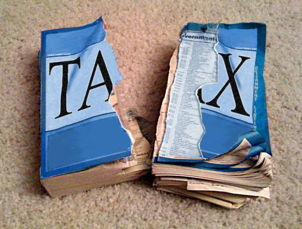 How do you pay taxes for your LLC